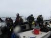 Diving with the seals Glad Tidings VII