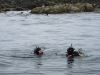 Reuben and Duncan surrounded by seals