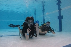 Try Dive 2012