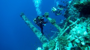 Numidia Wreck, Big Brother