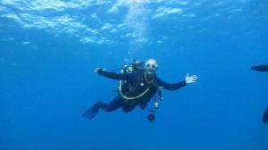 Basil Diving
